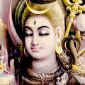 Шива 8